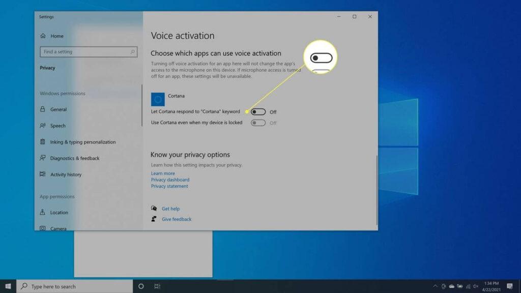Voice activation permissions